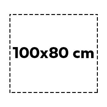 100×80